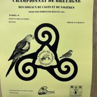 Championat de Bretagne